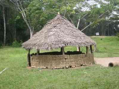 Palaver Liberiana